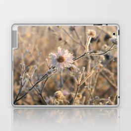 frozen delicacy Laptop & iPad Skin
