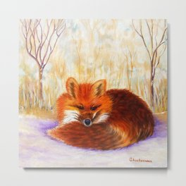 Red fox small nap | Renard roux petite sieste Metal Print