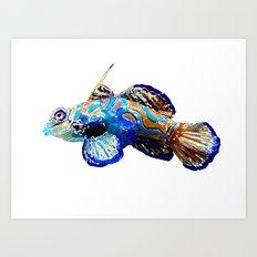 Multicolored Fish Art Print