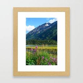 July at Tern Lake - II Framed Art Print