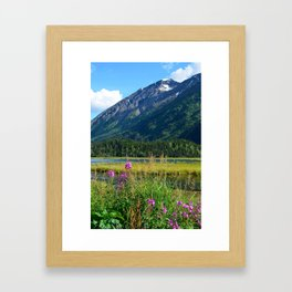 July at Tern Lake - II Framed Art Print