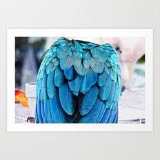 Parrot Life (2) Art Print