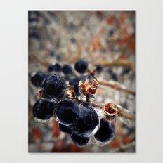 Cryogenic Canvas Print