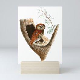 Scops Tunia Jerdon Mini Art Print
