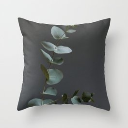 Eucalyptus leaves in the afternoon Throw Pillow