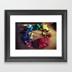 Cat Color Wheel Framed Art Print
