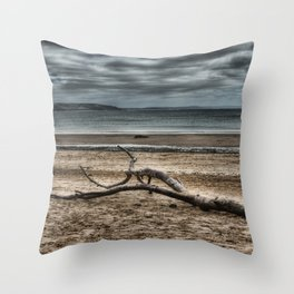 Driftwood 4 Throw Pillow