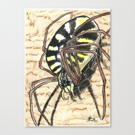 Orb weaver watercolor study Canvas Print