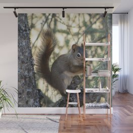 Soldotna Red Squirrel Wall Mural