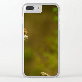 Cute Squirrel (Color) Clear iPhone Case