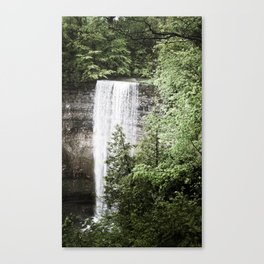 A Rush to the Head Canvas Print