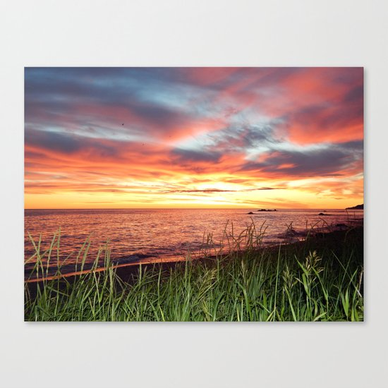 Dawn and the Grass Canvas Print