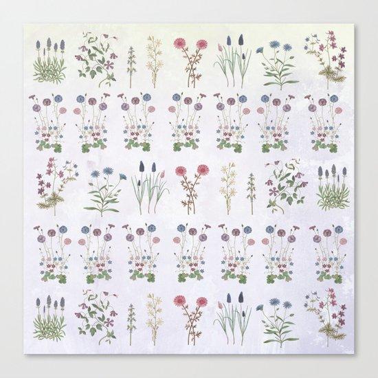 Growing a garden Canvas Print