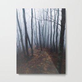 Foggy Trails Metal Print
