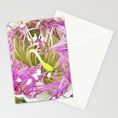 Caper Flower Blossom Stationery Cards