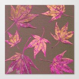 Japanese maple leaves - neon pink on khaki Canvas Print