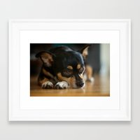 charlie Framed Art Prints featuring Charlie by Leandro
