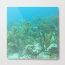 Watercolor Seascape, St John 08, USVI Metal Print