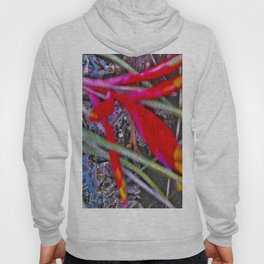 Bromeliad in the Cathedral Hoody
