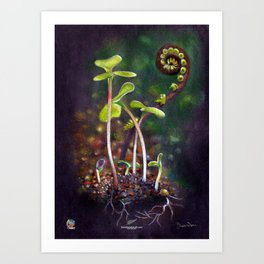 The miracle of Life Art Print