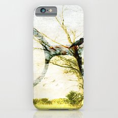 A wilderness spectacle iPhone 6s Slim Case