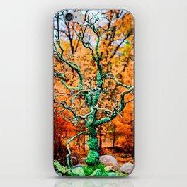 Tree Rebirth iPhone Skin