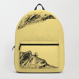 Curious bear Backpack