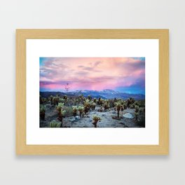Desert Wonder Framed Art Print