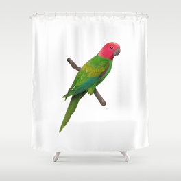Colorful Parrot 2 Shower Curtain