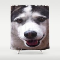 husky Shower Curtains featuring Siberian Husky by Tom Faulkner