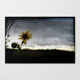 Cloudy Day Sunshine Canvas Print