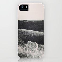 Pony Grazing iPhone Case