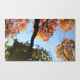take a HIKE ☺ Canvas Print