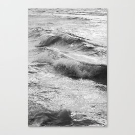 Take Me Surfing Canvas Print