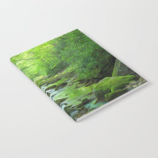 Rocky Forest Creek Notebook