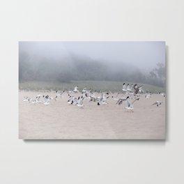 Fog And Friends Metal Print