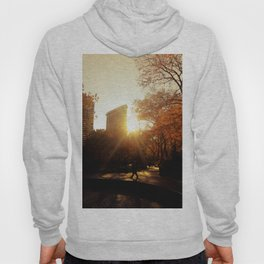 Flatiron Building Sunset - New York City Hoody