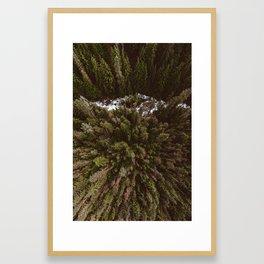 Kokanee Creek Framed Art Print