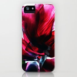 Flower Petals Artfully Arranged iPhone Case