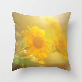 sunny evenings Throw Pillow