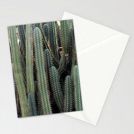 Desert Cacti / Cactus Stationery Cards