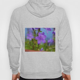 Bellflower in the Rain Hoody