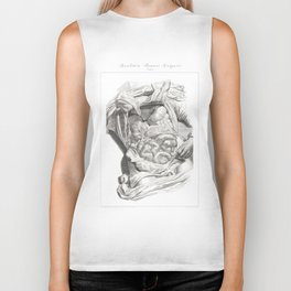 Human Anatomy Art Print LIVER STOMACH COLON Vintage Anatomy, doctor medical art, Antique Book Plate Biker Tank