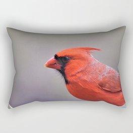 The Visitor Rectangular Pillow