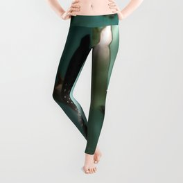Majestic Flight of the Stingray Leggings