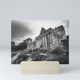 Muckross Abbey Mini Art Print