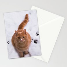 Ginger Kitty Discovers Snow! Stationery Cards