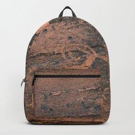 Desert Rock Art - Petroglyphs - II Backpack