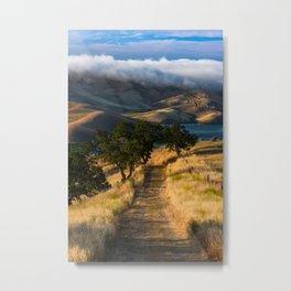 Vista Grande Metal Print