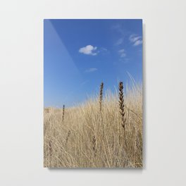 Ammophila Metal Print